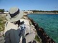 Starr-150331-0713-Coronopus didymus-Kim and sea wall-Harbor Sand Island-Midway Atoll (25271296195).jpg