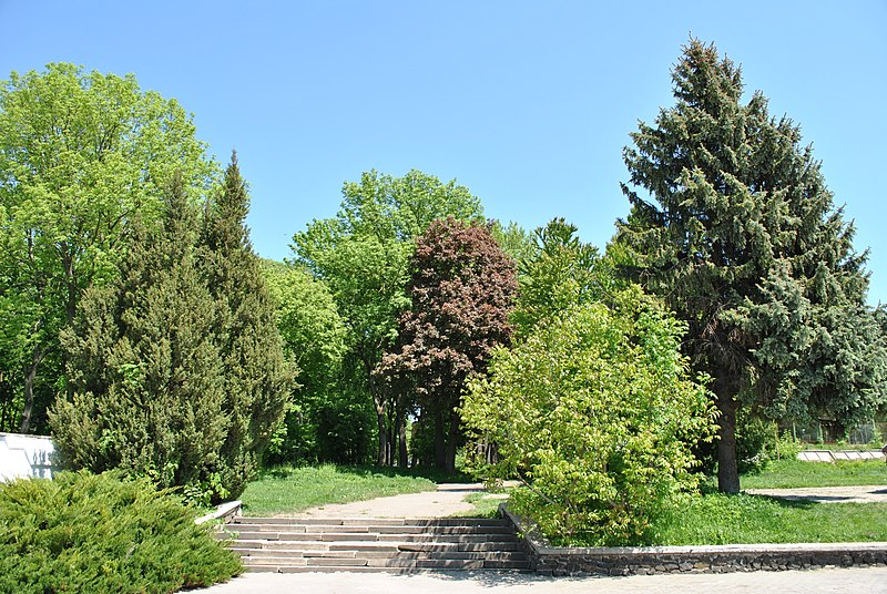 https://commons.wikimedia.org/wiki/File:Staryi-Park-15057176.jpg