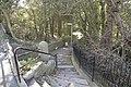 Steps... - geograph.org.uk - 1530175.jpg