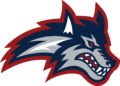 Stony Brook Athletics Primary Logo.png