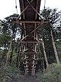 Suspension footbridge in Yakusugi Land from beneath.jpg