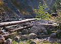 Svaneti River Near Mestia Mineral Waters-Upė prie Mestijos mineralinio vandens šaltinio (3871649923).jpg