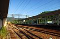 TRA FuLong Station Platform.jpg