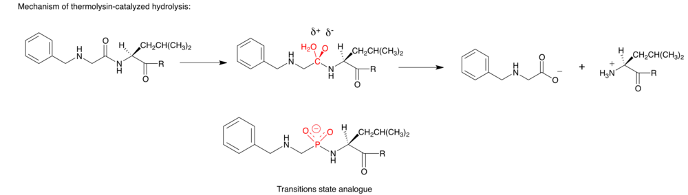Transitions state analogue example 2