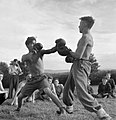 T wo Youtth Service Volunteers having a boxing match at an agricultural camp at Nunney Catch in Somerset during 1943. D16345.jpg