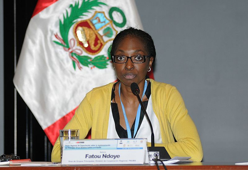 Towards A Pollution-Free Planet: National Climate Seminar with Fatou Ndoye