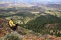 Tamarack Lookout Tower, Umatilla National Forest (33725160523).jpg