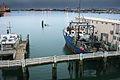 Tauranga Harbor (6871831491).jpg
