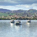 Tauranga Seas (5911512544).jpg
