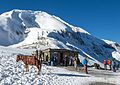 Tea-house on Thorong La pass - Annapurna Circuit, Nepal - panoramio.jpg