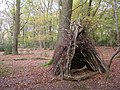 Temporary wooden shelter on Lyndhurst Hill, New Forest - geograph.org.uk - 81283.jpg