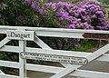 The Gate at Dangart - geograph.org.uk - 467054.jpg