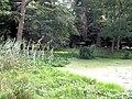 The Pond near the Monument, Ashridge, in early September - geograph.org.uk - 1583311.jpg