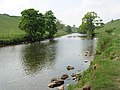 The River Wharfe - geograph.org.uk - 820111.jpg