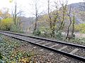 The railway through Leigh Woods - Nov 2013 - panoramio.jpg