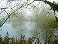 The small pond, Coate Water country park, Swindon - geograph.org.uk - 603117.jpg