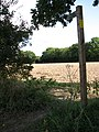 The start of a public footpath - geograph.org.uk - 986272.jpg