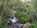 The well vegetated banks of the Tullybranigan River - geograph.org.uk - 1472061.jpg
