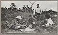 Theodore Roosevelt, Kermit Roosevelt & the naturalists LCCN2010645472.jpg