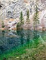 Three Trees At Grassi Lake (245998629).jpeg
