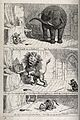 Three scenes from the adventures of Tom Puss. Reproduction o Wellcome V0023059.jpg