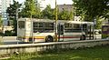 Tirana city bus.JPG