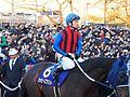 Tokyo Daishoten Day at Oi racecourse (31180041403).jpg
