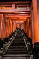 Torii in Fushimi Inari shrime (11266443236).jpg