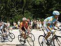 Tour de France 2010 - panoramio (10).jpg