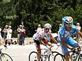 Tour de France 2010 - panoramio (8).jpg