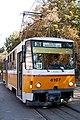 Trams in Sofia 2012 PD 072.jpg