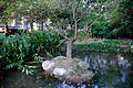 Tree in Island of Fumin Ecology Park Pond 20141224.jpg