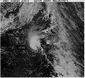 Tropical Storm Jose (1981).JPG
