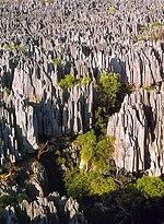 Tsingy de Bemeraha Milli Parkı, Madagaskar