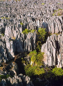 Tsingy de Bemaraha.jpg