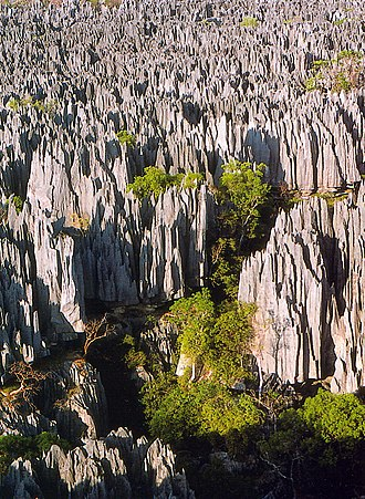 Tsingy de Bemaraha Strict Nature Reserve - A view of the park