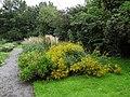 Tuinen van Mien Ruis - Dedemsvaart - 6326840615.jpg