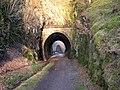 Tunnel and Bridge - geograph.org.uk - 785411.jpg