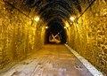 Tunnel bois clair interieur.jpg