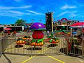 Turtle Parade - panoramio.jpg