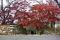 Tuyama castle 01.jpg