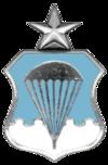 Air Force Senior Parachutist Badge