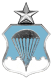 Air Force Senior Parachutist Badge