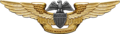 USN - Professional Aviation Maintenance Officer Insignia.png
