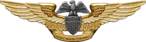 U.S. Navy Professional Aviation Maintenance Officer Badge