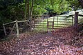 Unusual stile at a firmly fixed gate - geograph.org.uk - 1003877.jpg
