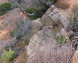 Vaqueros Formation - Outcrop of the Vaqueros Formation in Gaviota State Park, California.