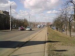 Varvarovskiy Bridge-5.JPG