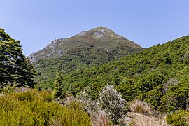 View from Cobb Valley, Kahurangi National Park, New Zealand.jpg