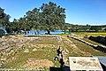 Villa Romana de Tourega - Portugal (13383004184).jpg